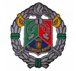 Patch 1er REC (Regiment...