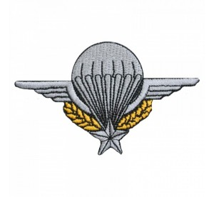 Patch Brevet TAP (Troupes...