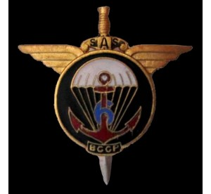 Metal Badge 6eme RPIMa...