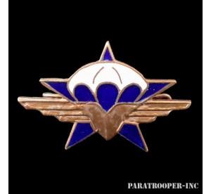 Metal Badge 1er RCP...
